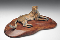 """Pause""